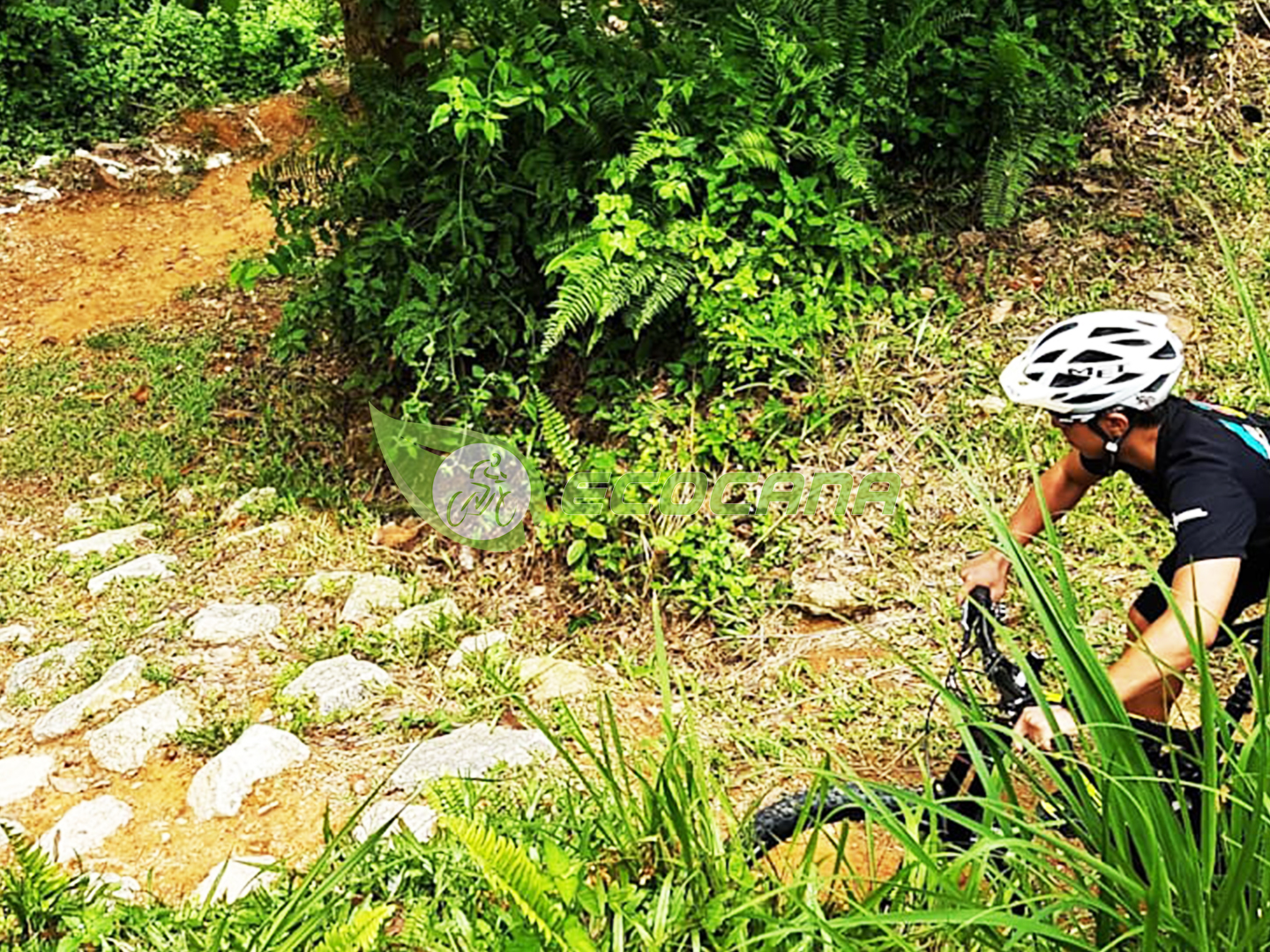 Putrajaya Challenge Park Dirt Mountain Biking